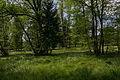 NSG 78c Doblwiesen 002.jpg