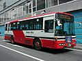 NanbuBus P-LV314L No.343 With-RuruppuRight.jpg
