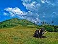 Nasugbu Trilogy in Batangas - 8.jpg