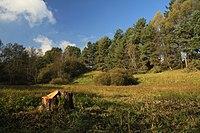 Nature reserve Dobrockovske hadce in autumn 2011 (34).JPG