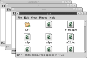 File manager - The Nautilus file manager had a spatial mode, which was removed with the arrival of GNOME (and with it Nautilus) version 3.x.  Each of these windows displays an open directory.