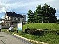 Neagari Pine Tree and Former Muto Villa.JPG