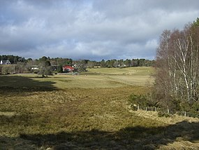 Near Logie Hill - geograph.org.uk - 1750961.jpg