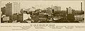New Orleans Skyline Standard Guide 1909.jpg