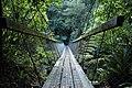 New Zealand, Great Walk Lake Waikaremoana (4).JPG