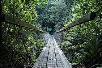 New Zealand Great Walks - Typical swing bridge on Waikaremoana Great Walk