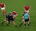 New Zealand national rugby 20191101d22.jpg