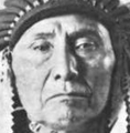 Nez Perce American Indian Mongoloid.png