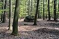 Niedersachsen, Lamstedt, im Naturschutzgebiet NIK 2742.JPG