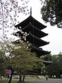 Ninna-ji National Treasure World heritage Kyoto 国宝・世界遺産 仁和寺 京都48.JPG