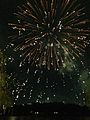 Nishi-nippon Ohori Fireworks Festival 20140801-3.jpg