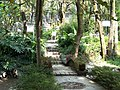 Norbulingka Garden, Norbulingka Institute.jpg