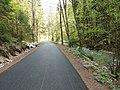 Nový asfalt v Gaderskej doline - panoramio.jpg