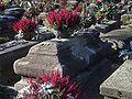 Nuremberg Johannis Cemetery Veit Stoss Grave f ne.jpg
