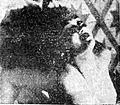 Nurnaningsih Suara Merdeka 18 Oct 1954 p2.jpg