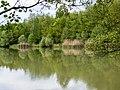 Oberau Mainaue P5050436.jpg