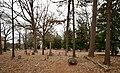 Oberlin Cemetery Raleigh, North Carolina, Wake County.jpg
