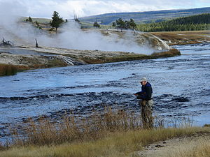 Angling in Yellowstone National Park - Fly fishing in the Firehole River