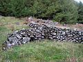 Old field wall, Clatteringshaws Forest - geograph.org.uk - 262777.jpg