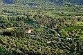 Olimpia, paisajes 2.jpg