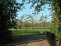 Orchard or Golf Course^ - geograph.org.uk - 167982.jpg