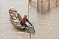 Pêcheur sur le Bassac (île du Tigre, Vietnam) (6635514787).jpg