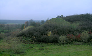 Golub-Dobrzyń County County in Kuyavian-Pomeranian Voivodeship, Poland
