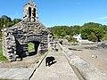 P1090052 St.Brynach Church Ruins Pembrokeshire.jpg