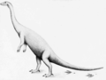 PSM V66 D145 Restoration of the new windsor dinosaur.png