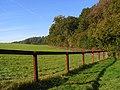 Paddock and woodland edge, Stokenchurch - geograph.org.uk - 1013343.jpg