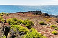 Paisaje en Punta Pitt, isla de San Cristóbal, islas Galápagos, Ecuador, 2015-07-24, DD 53.JPG