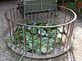 Palazzo budini gattai grifoni, giardino 07.JPG