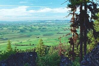 Palouse - Image: Palouse fields from Kamiak Butte 00 08 23