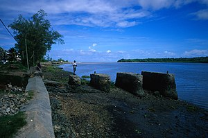 Pangani River - Near the mouth at Pangani town