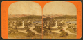 Panoramic view of Public Garden, by Moulton, John S., b. 1820 or 1.png