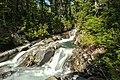Paradise River (216758369).jpeg