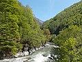 Parcul Național Defileul Jiului.JPG