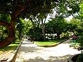 Park Krk.jpg