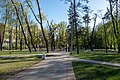Park on Uschodniaja street (Minsk, Belarus).jpg