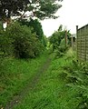 Part of the Bronte Way - The Avenue, Clayton - geograph.org.uk - 966757.jpg