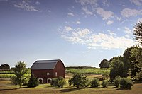 A pastoral farm scene with a classic red barn.