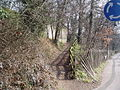 Path into the woods - geograph.org.uk - 137114.jpg