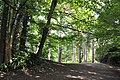Path through woodland - National History Museum, St Fagans - geograph.org.uk - 1458900.jpg