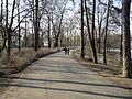 Pathway in the Park Sołacki.JPG