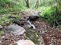 Pequeña corriente de agua - panoramio.jpg