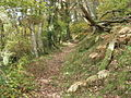 Pererindod Melangell trail - geograph.org.uk - 600268.jpg
