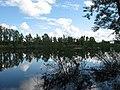 Pervomaysky District, Tomsk Oblast, Russia - panoramio (25).jpg