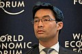 Philipp Roesler World Economic Forum 2013 (2).jpg
