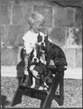 Photograph of Gerald R. Ford, Jr. with Two Boston Terriers - NARA - 186947.tif