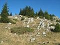 Piatra Mare - panoramio - Cioboata Andrei (1).jpg